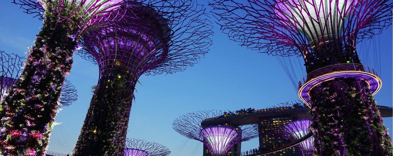 Dlaczego Singapur jest tak bogaty?