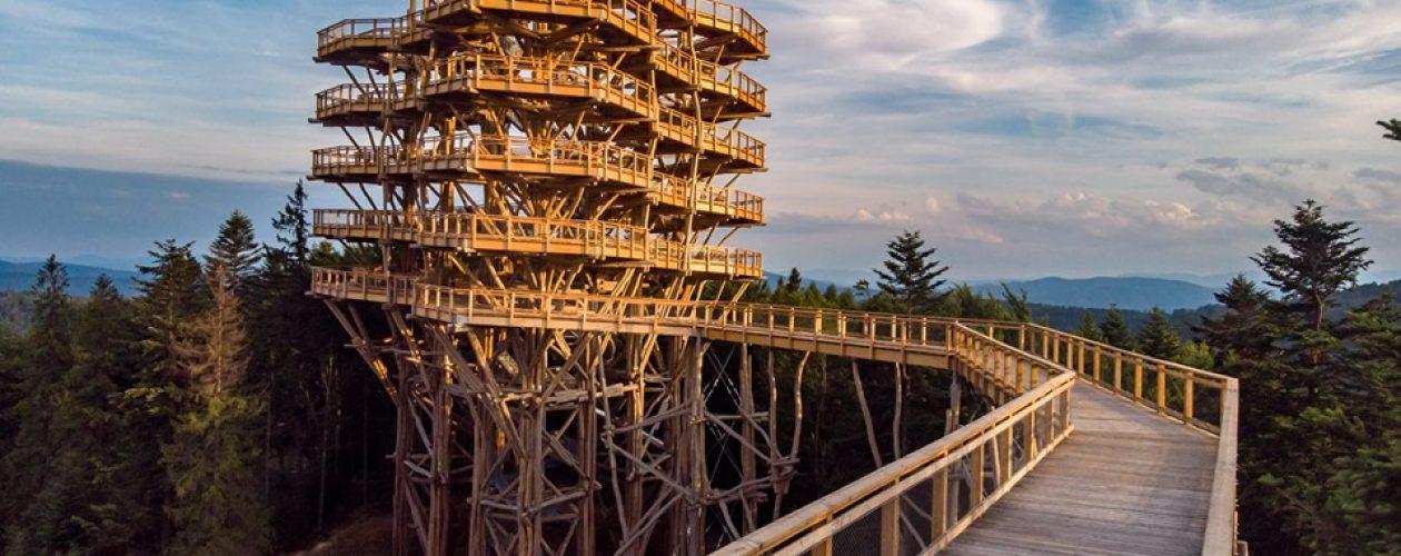 Wieża widokowa w Krynicy-Zdrój zachwyca turystów. Pochwał nie ma końca!